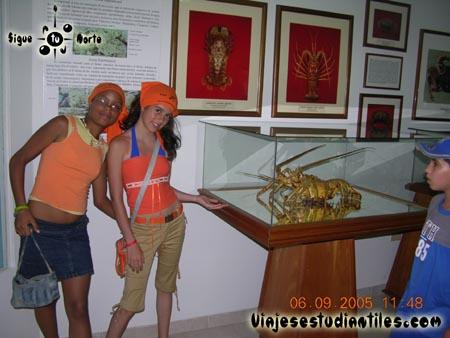 http://www.viajesestudiantiles.com/site/images/servicios/photobox-margarita-primaria/DSCN9585.jpg