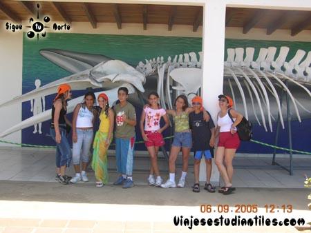 http://www.viajesestudiantiles.com/site/images/servicios/photobox-margarita-primaria/DSCN9610.jpg