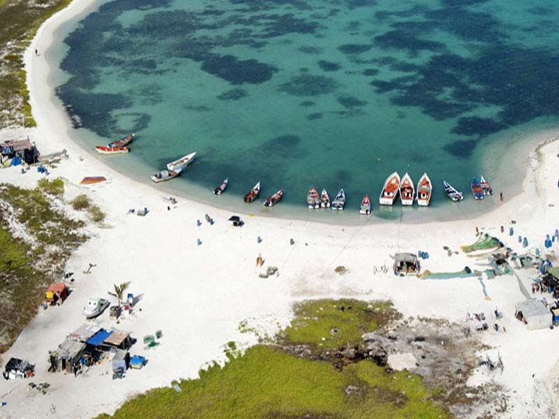 http://www.viajesestudiantiles.com/site/images/servicios/photobox-tortuga/DSC09648.jpg
