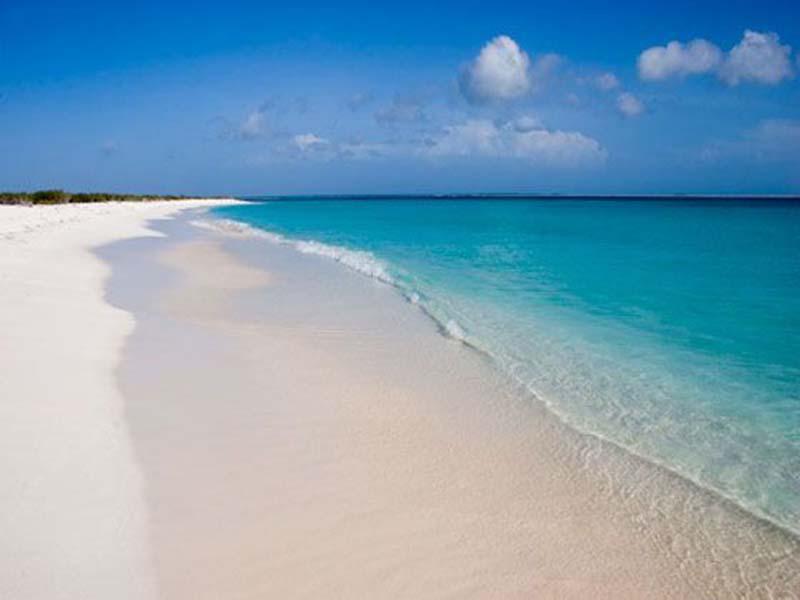 http://www.viajesestudiantiles.com/site/images/servicios/photobox-tortuga/af000db2cfb1f79a7b606fefdfcf1233.jpg